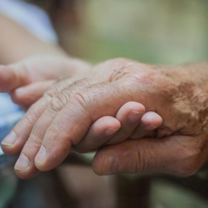 介護職が活躍する施設